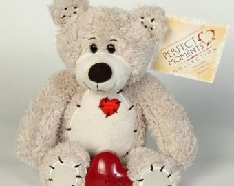 Record Any Special Message or Sound to Keep in this Teddy Bear and Hold the Memory Forever!