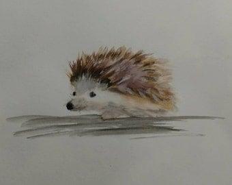 Hedgehog Watercolor Painting