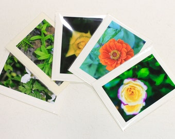 5 Blank Greeting Cards