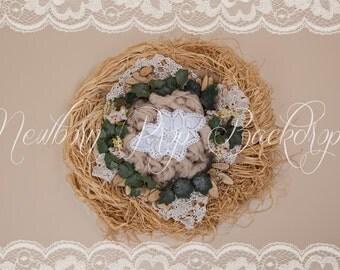 Newborn Digital Backdrop (raffia/nest/ivy/crochet)