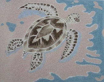 Displays sand-turtle sea