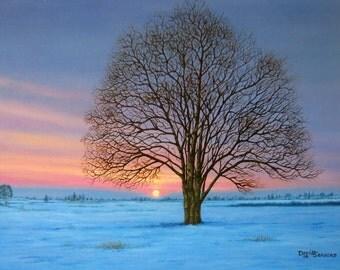 Cavan Snow 2 (Oil on Canvas 400x300mm)