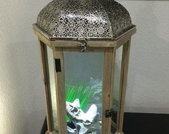Decorative Fish Tank
