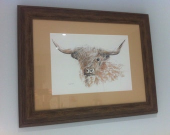 Highland Bull print mounted and framed