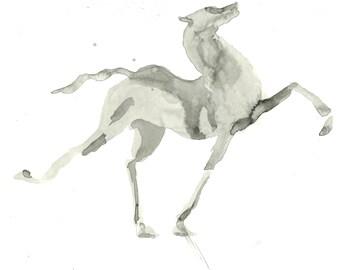 Prancing Horse Print