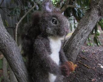 Squirrley Squirrel