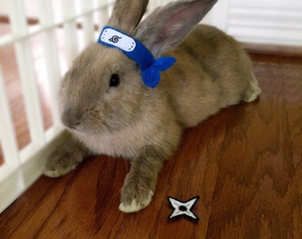 Pet Rabbit Naruto Costume, Pet Rabbit Accessory, Pet Rabbit Costume, Naruto Headband, Naruto Headband & Shuriken