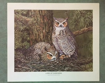 Set of 2 owls prints from the Publis Service Co of Colorado 1970s