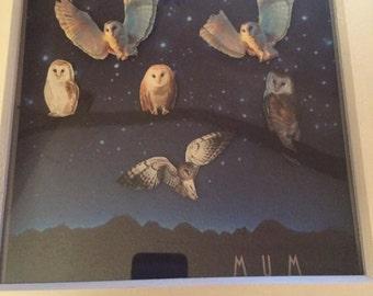 Personalised Owl Frame