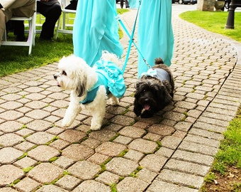 Custom Wedding Dress: For Your Yorkie Chihuahua ShihTzu Pomeranian Schnauzer