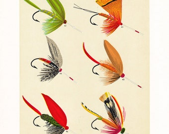 fly fishing print from an 1892 book, printable digital download no. 955