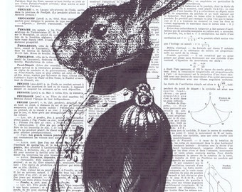 Bunny,Bunnie Rabbit,Gift,repurposed,Antique Book Page.art,whimsical.buy 3 get 1 FREE,French, Paris.nursery.mom.child.prince.anthropomorphic.