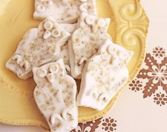 Owl Soap Set - Oatmeal Soap, Bird Soap, Animal Soap, Sensative Skin Soap, Kids Soap, Baby Shower Soap, Soap Favors, Hostess Gift, Children