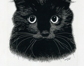 BLACK CAT - Original Pen and Ink
