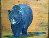 Black bear on old wood