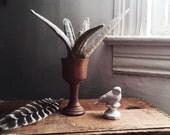 linen succulent, in vintage wooden chalice.