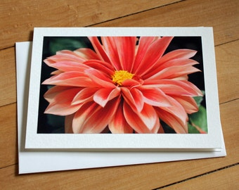 Dahlia Greeting Card, Flower Card, Floral, Blank Greeting Card, Note Card, Any Occasion, Birthday Card, Envelope, Photography, Photograph