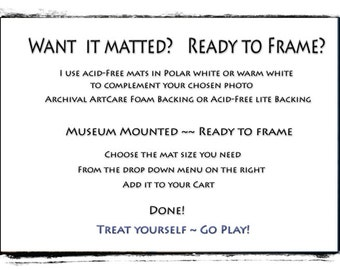 Upgrade:  Add A Mat, Ready to Frame, You Choose Size, Standard Frame Sizes
