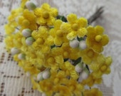 Czech Republic Velvet Forget Me Nots Millinery Fabric Flowers  Bright Yellow