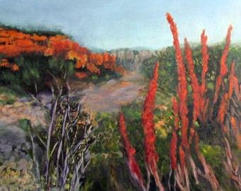 Art Painting Original Acrylic Paints Landscape Rocks Red Green Plants 20 x  24