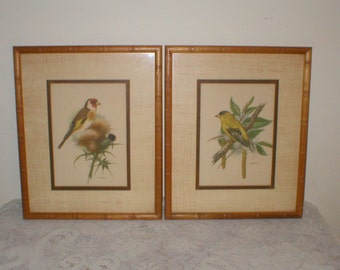 Bird Prints Pair Signed PH Gonner Framed 9X11 Antique Vintage Pictures