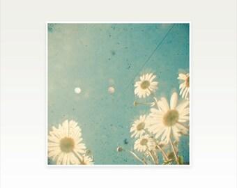 CLEARANCE SALE! Daisy Photography, Summer Wall Art, Floral Nursery Decor - Daydream