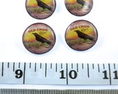 """Custom Order - 4 Crow Sewing Buttons.  3/4"""" Shank Style Sewing Buttons."""