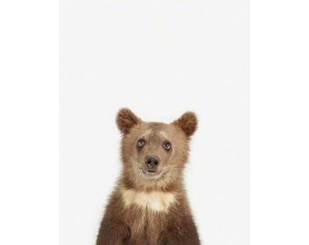 Bear Cub Little Darling. Safari Animal Print. Baby Animals Nursery Art Print. Animal Nursery Decor. Baby Animal Photos.