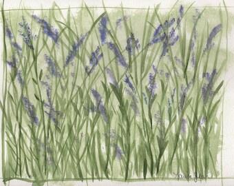 Lavender Green Field 8inx10in Image 9inx12in paper