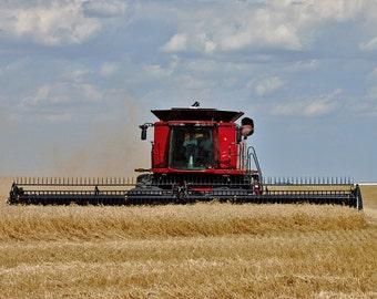 Wheat Harvest (Western Oklahoma)