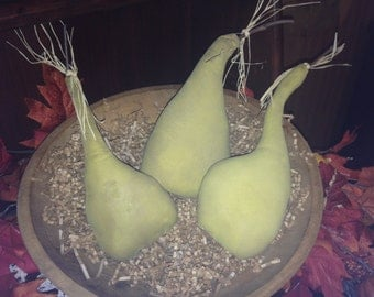 Primitive Gourds set of 3  Fall/Thanksgiving Decor