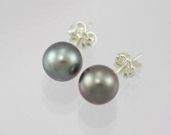 Tahitian Pearl Drop Studs in Sterling Silver