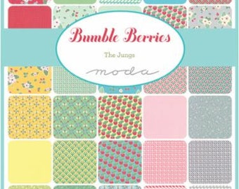 Moda Layer Cake - Bumble Berries Layer Cake by The Jungs  - 42 - 10 Inch Squares