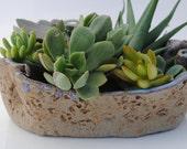 ceramic planter pot garden plant bowl window garden wavy planter
