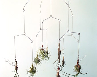 Modern Tillandsia Mobile  Use coupon code MOBILE for 20% OFF!