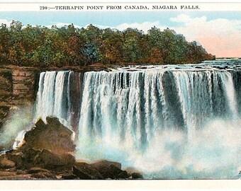 Vintage Niagara Falls Postcard - Terrapin Point (Unused)