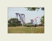 SheiKra Steel Roller Coaster Busch Gardens 5x7 print with 8x10 mat