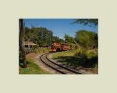 Serengeti Railway at Busch Gardens Amusement Park 5x7 print with 8x10 mat