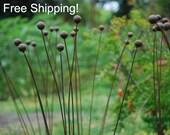 """Kinetic Metal Garden Art Sculpture- Grouping of 7 -1""""balls-Ball Weeds-"""