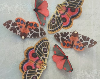 Trio Moth hair clips made from silk with Swarovski Crystals, beautiful hand made accessorises.