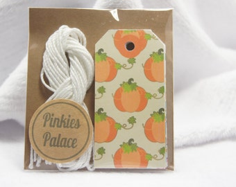 Small Fall Autumn Pumpkin Gift Tags Birthday Tags Favor Tags Set of 12 - T530