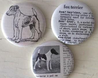 Fox Terrier Vintage Dictionary Illustration Magnet Set of 3