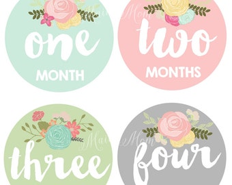 FREE GIFT / Baby Girl Month Stickers, Monthly Baby Stickers, Milestone Bodysuit Stickers, Floral, Flowers, Vintage Roses Shower Gift