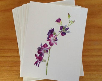 6 blank cards - Dendrobium orchids