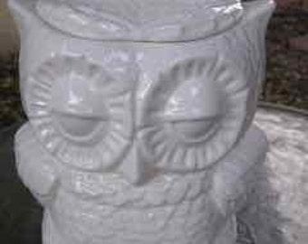 Glazed Medium Owl Kitchen Jar