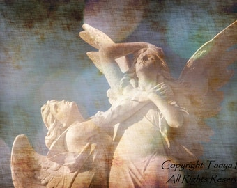 Eternal Embrace, Angel, Statue, Gothic, Victorian, Cemetery, Graveyard, Nursery, Religious, Eerie, Haunted, Guardian Angel, Catholic, 8x12