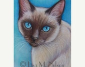 ON SALE Original Siamese Cat Art Colored Pencil Drawing Painting