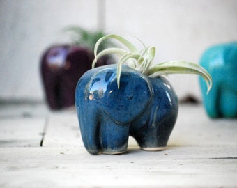 Elephant air plant holder, ceramic elephant planter, unique valentines gift, air plant pod