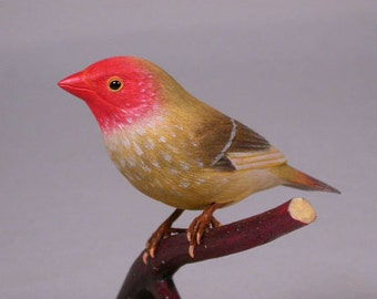Star Finch Hand Carved Wooden Bird