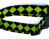 Wickedly Adorable Green and Black Harlequin Diamond Dog Collar